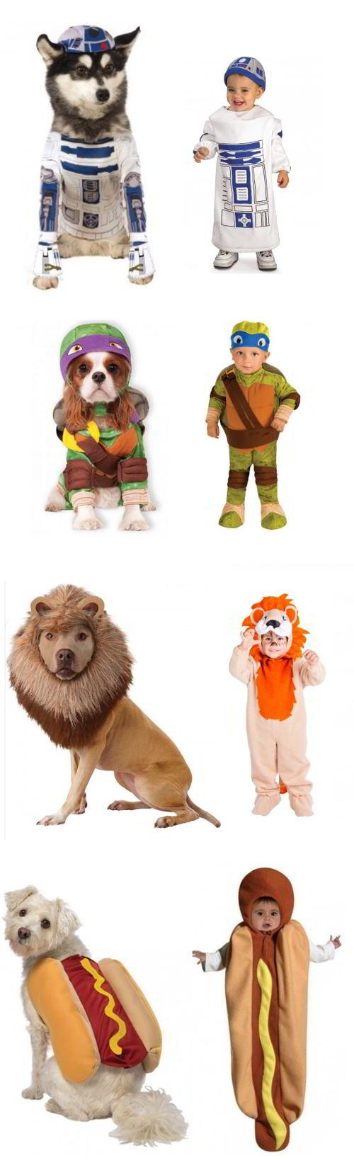 costumi di carnevale per cani
