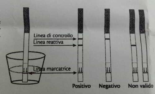 come funzionano gli stick ovulatori