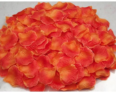 festa a tema coco petali